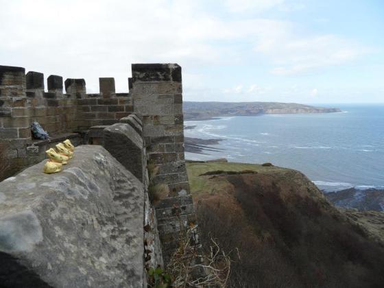Raven Hall castle